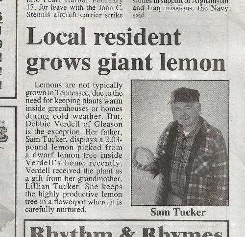 Lemon_news