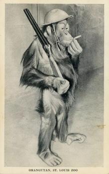 jerry-postcard